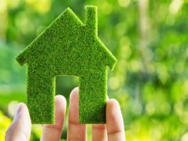 first_time_homebuyer_green_bush